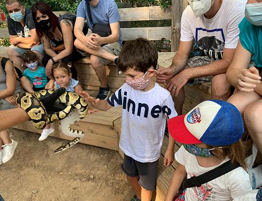 https://granjaaventurapark.com/wp-content/uploads/GRA_Fotos_arrusel_Granja_Aventura_Park_animales_arreu_mon_535x411_02.jpg