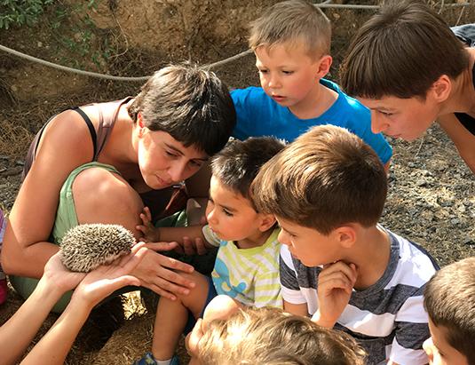 https://granjaaventurapark.com/wp-content/uploads/GRA_Fotos_arrusel_Granja_Aventura_Park_animales_arreu_mon_peques_535x411_07.jpg