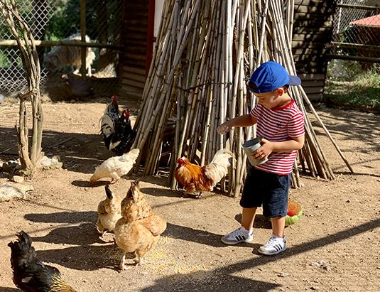 https://granjaaventurapark.com/wp-content/uploads/GRA_Fotos_arrusel_Granja_Aventura_Park_animales_dar_de_comer_535x411_06.jpg
