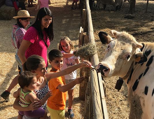 https://granjaaventurapark.com/wp-content/uploads/GRA_Fotos_arrusel_Granja_Aventura_Park_animales_dar_de_comer_535x411_07.jpg