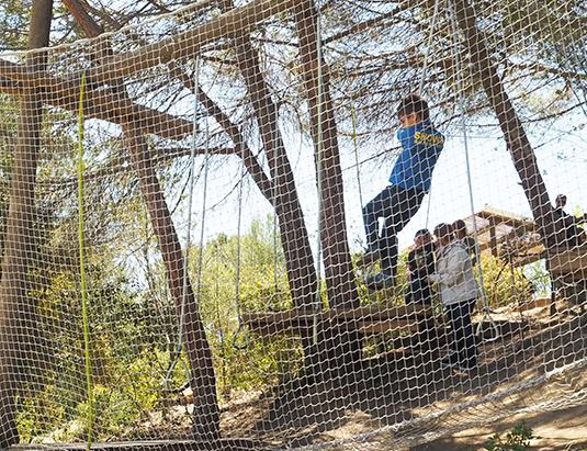 https://granjaaventurapark.com/wp-content/uploads/GRA_Fotos_carrusel_Granja_Aventura_Park_actividades_aventura_lianes_535x411_02.jpg